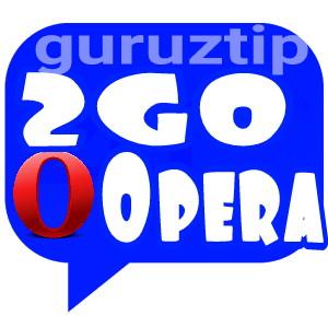 2go v3.0 And Operamini7.0